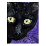 Peekaboo, Black Cat on Purple Painting Postcard
