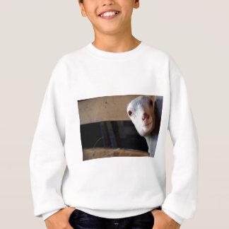 Peekaboo I see you! Sweatshirt