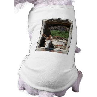 Peeking donkey sleeveless dog shirt