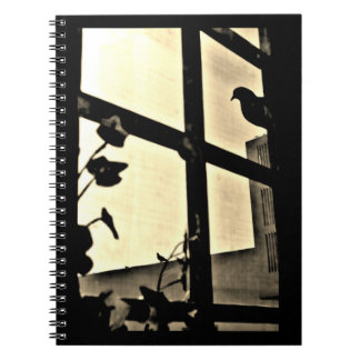 Peeking Pigeon Notebooks