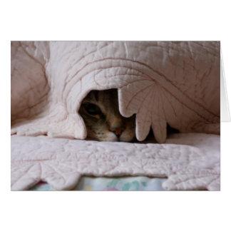 Peeking Tom card