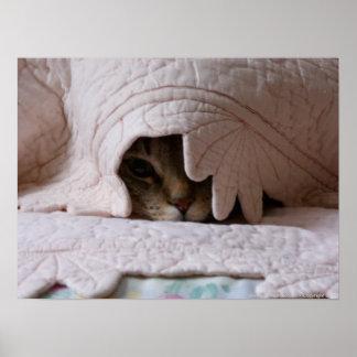 Peeking Tom poster