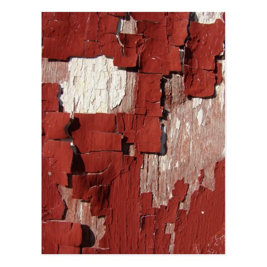Peeling Red Barn Paint Postcard