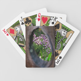 Peephole Garden Bicycle Playing Cards