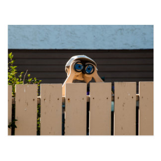 Peeping  Neighbor Postcard