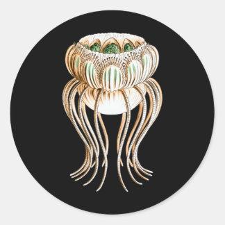Pegantha (Jellyfish) Round Sticker