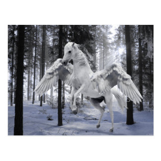 Pegasus Winged Flying Horse Forest Snow Postcard