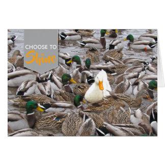 Pekin duck amidst mallards card