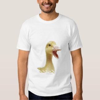 Pekin duck chick, head-shot shirts