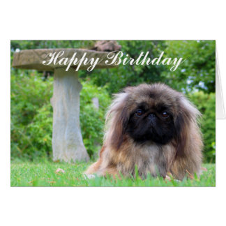 Pekingese dog custom birthday card