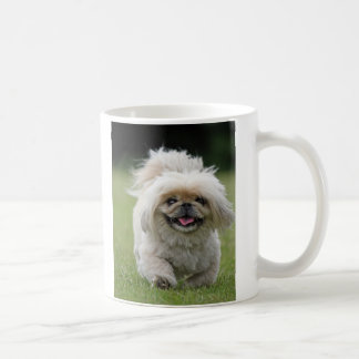 Pekingese dog cute photo mug