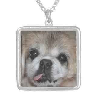 Pekingese dog necklace