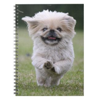 Pekingese dog notebook, cute photo, gift spiral note book