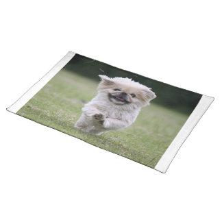 Pekingese dog place mat, cute photo table mat place mat