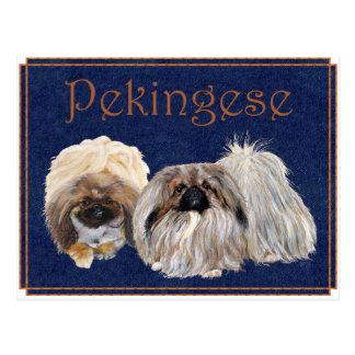 Pekingese Dogs Postcard