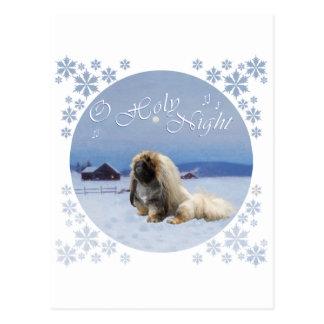 Pekingese O Holy Night Postcard