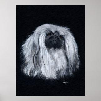 Pekingese Portrait in Black White Print