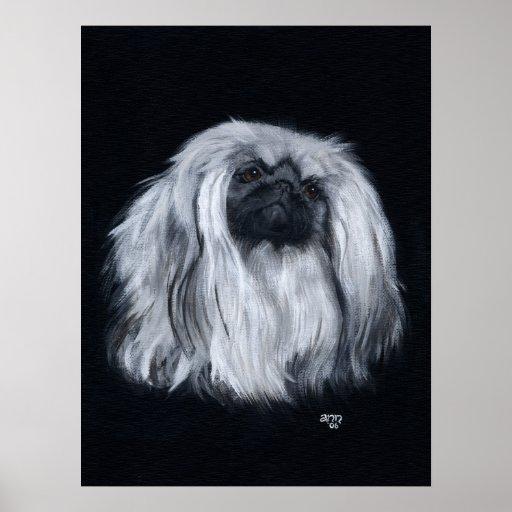 Pekingese Portrait in Black & White Print