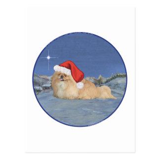 Pekingese Santa Claus Postcard
