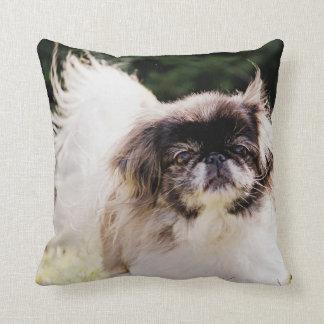Pekingese Throw Pillow