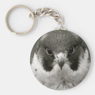 Pelegrine falcon in black and white key chains