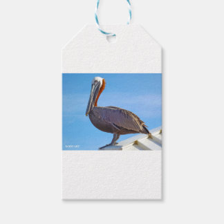 Pelican Again Gift Tags