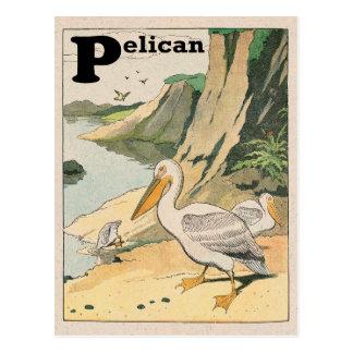 Pelican Alphabet Postcard