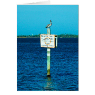 Pelican and Manatee Sign Greeting Card