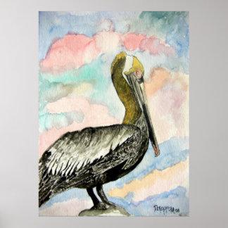 pelican_bird_2