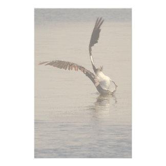 Pelican Birds Wildlife Animals Stationery