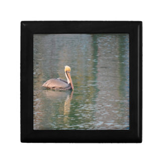 pelican floating in river colorful reflections small square gift box