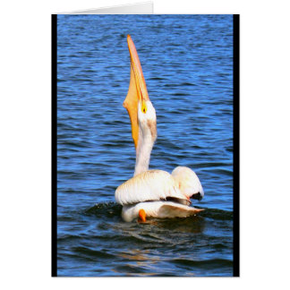 PeliCan I Wish You Happy Birthday? Card