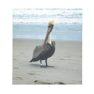 Pelican in Florida Notepad