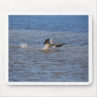 Pelican Landing Mouse Pad