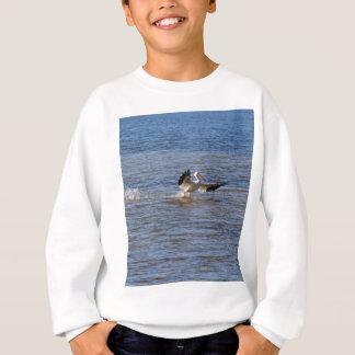 Pelican Landing Sweatshirt