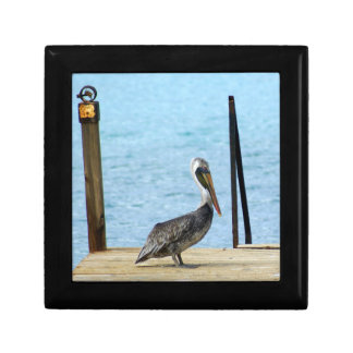 Pelican on the pier, Curacao Caribbean, Small Small Square Gift Box