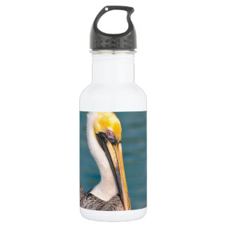 Pelican Portrait Close Up with Ocean in Background 532 Ml Water Bottle