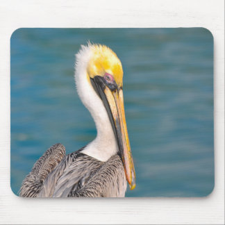 Pelican Portrait Close Up with Ocean in Background Mouse Pad