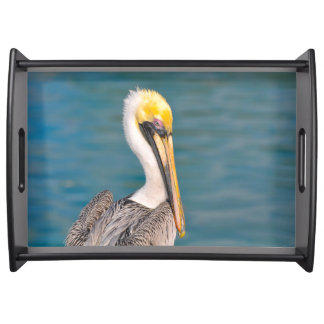 Pelican Portrait Close Up with Ocean in Background Serving Tray