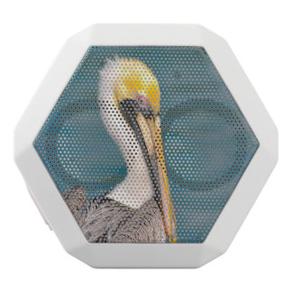 Pelican Portrait Close Up with Ocean in Background White Bluetooth Speaker