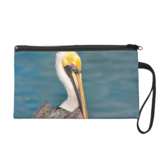 Pelican Portrait Close Up with Ocean in Background Wristlet