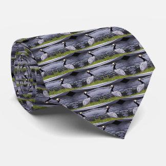 Pelican Poser Tie