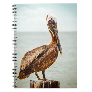 Pelican products note book