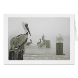 Pelicans and Shrimp boat Card