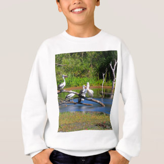Pelicans in wetlands, Outback Australia Sweatshirt