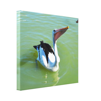 Pelicans Love Pie, Canvas Print