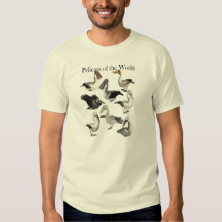 Pelicans of the World Shirt