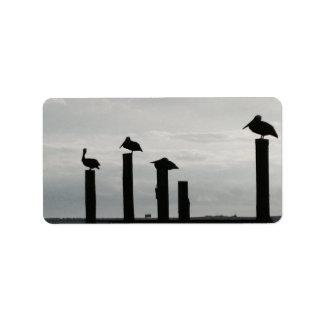 pelicans on the pier label