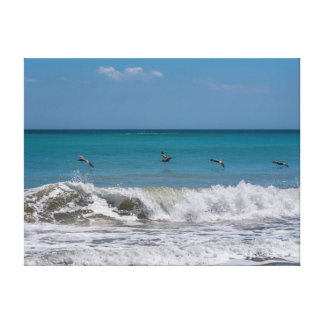 Pelicans over the Atlantic ocean Canvas Print
