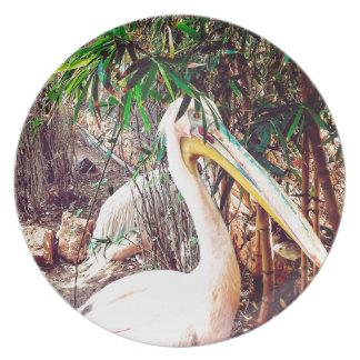 pelicans plate